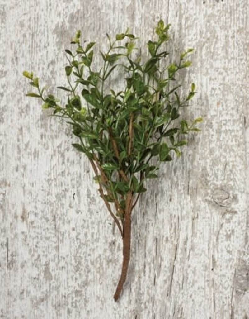Boxwood Floral Pick
