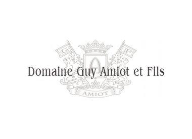 Guy Amiot