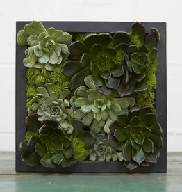 Accent Decor Carbon Box Planter 7x2.25