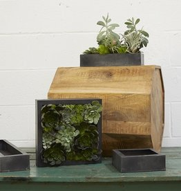 Accent Decor Carbon Box Planter 11x2.5