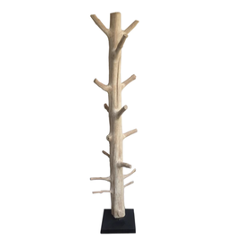 Lily's Living Mangosteen Tree Floor Coat Rack