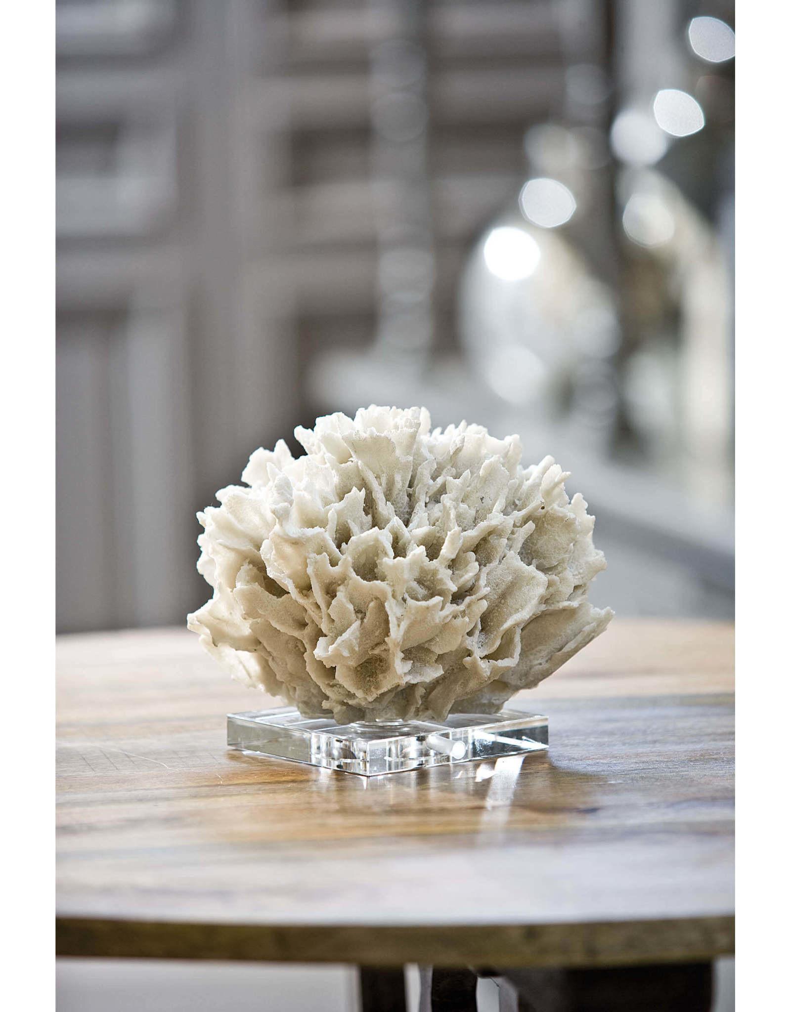 Regina Andrew Design Ribbon Coral (White)