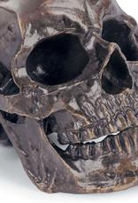 Regina Andrew Design Metal Skull (Antique Bronze)
