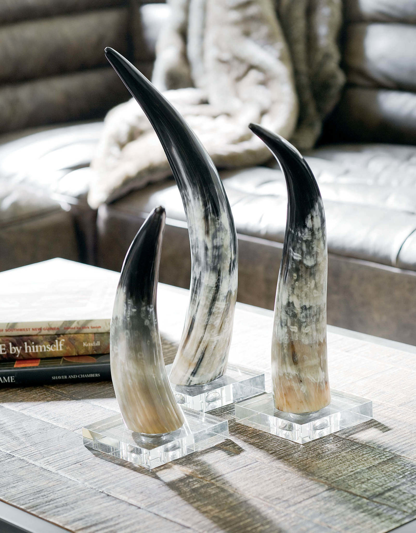 Regina Andrew Design Horn On Crystal Base Medium