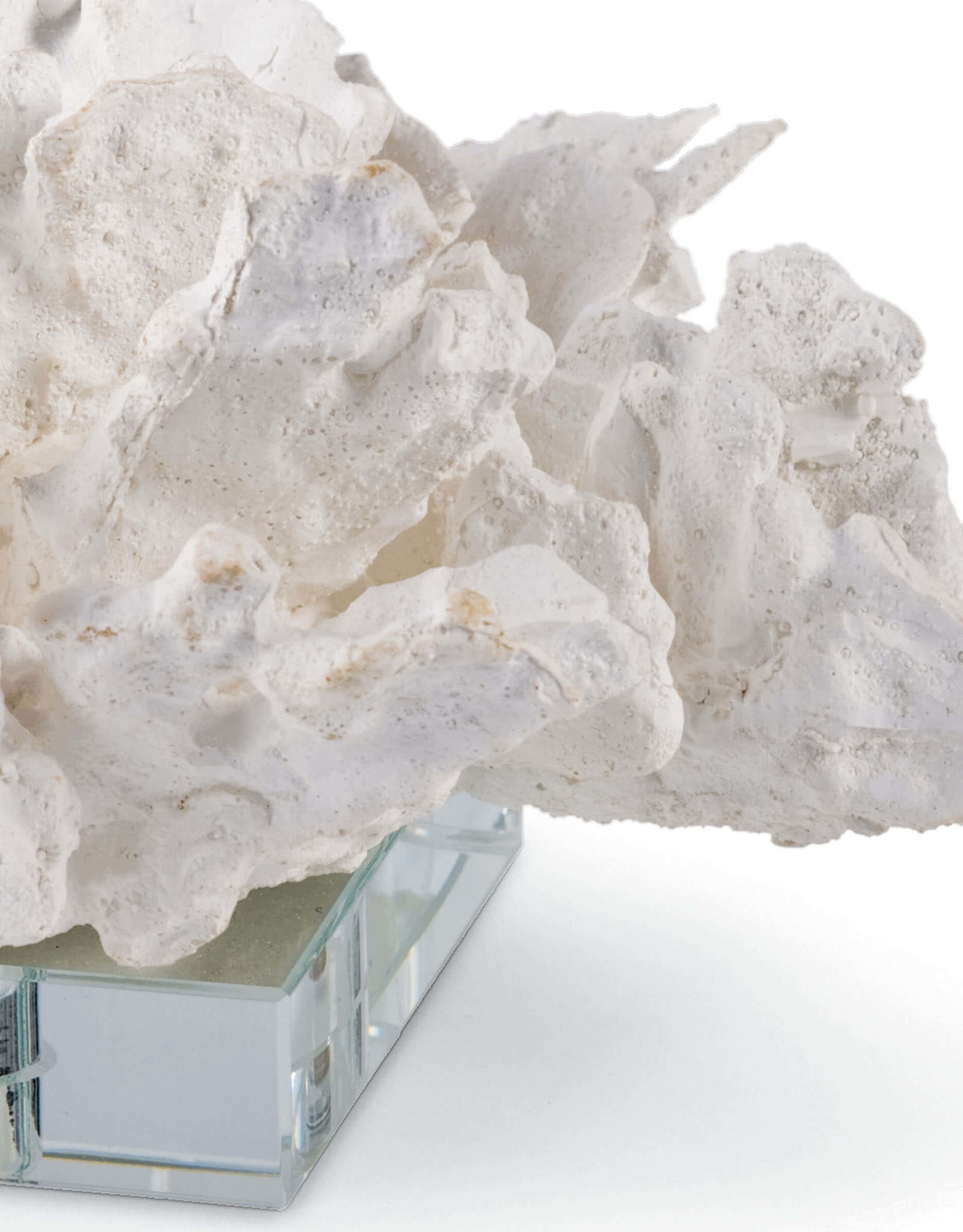 Regina Andrew Design Flower Coral On Crystal Base (White)