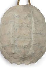 Regina Andrew Design Turtle Shell Accessory (Bleached)