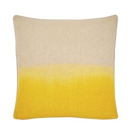 Piper Collection Jenkins Pillow - Yellow Ombre 22x22