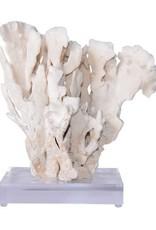 Cactus Coral - Large