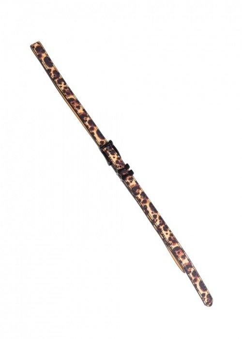 Banned Come Back Belt  Leopard Black