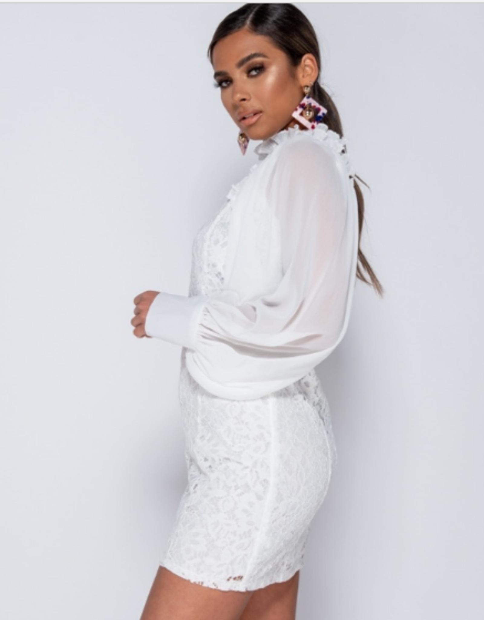 Parisian Lace High Neck Sheer Sleeve Mini Dress