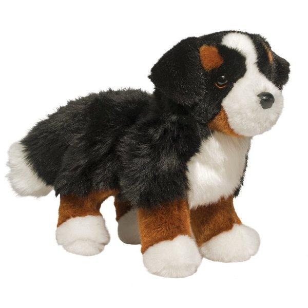 Stevie Bernese Mtn Dog