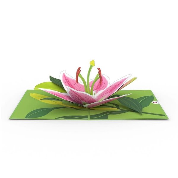 3D Lily Bloom Card