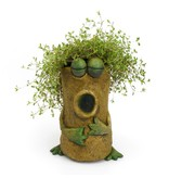 Luciano The Frog Planter