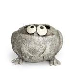 Romeo The Frog Planter