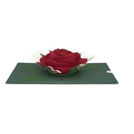 Lovepop 3D Red Rose Bloom Card