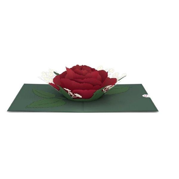 3D Red Rose Bloom Card