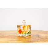 Lifetime Oil Candle Tangerine Orchid