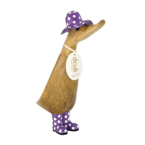 Duckling With Purple Spotted Hat