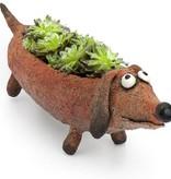 Mini Planter Dobby Doxin