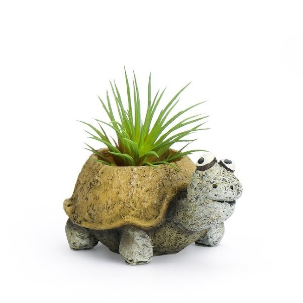 Preston The Baby Tortoise Planter