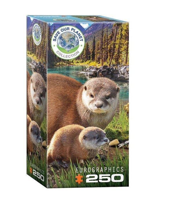 250 Piece Otter Puzzle