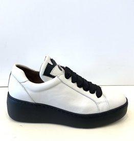 WONDERS - Leather Sneaker