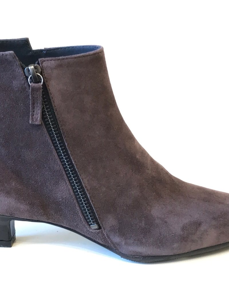 HOMERS - Kitty Ankle Boot