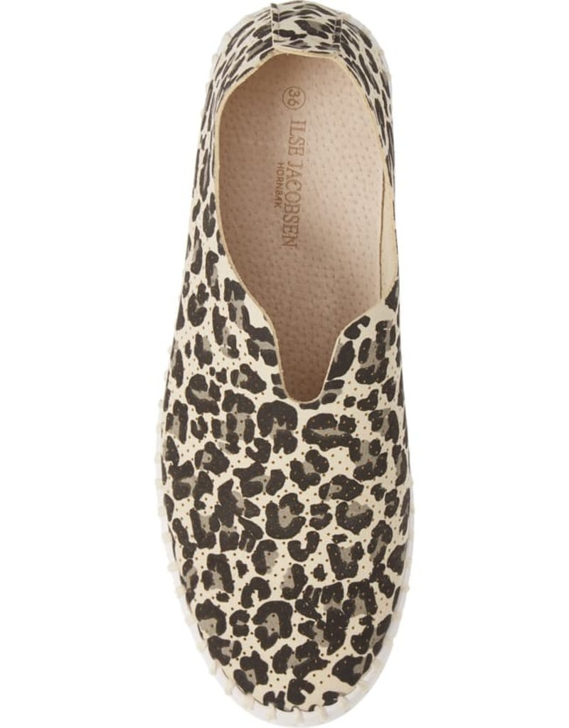 ILSE JACOBSEN - Leopard Tulip