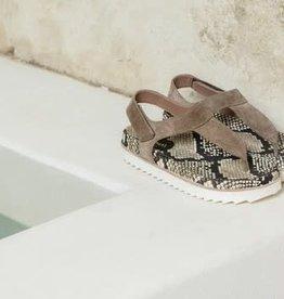 HOMERS - Crosta Sandal