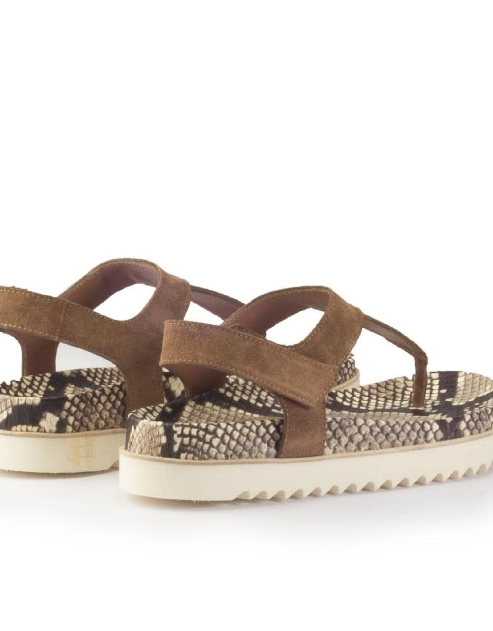 HOMERS - Crosta Sandal