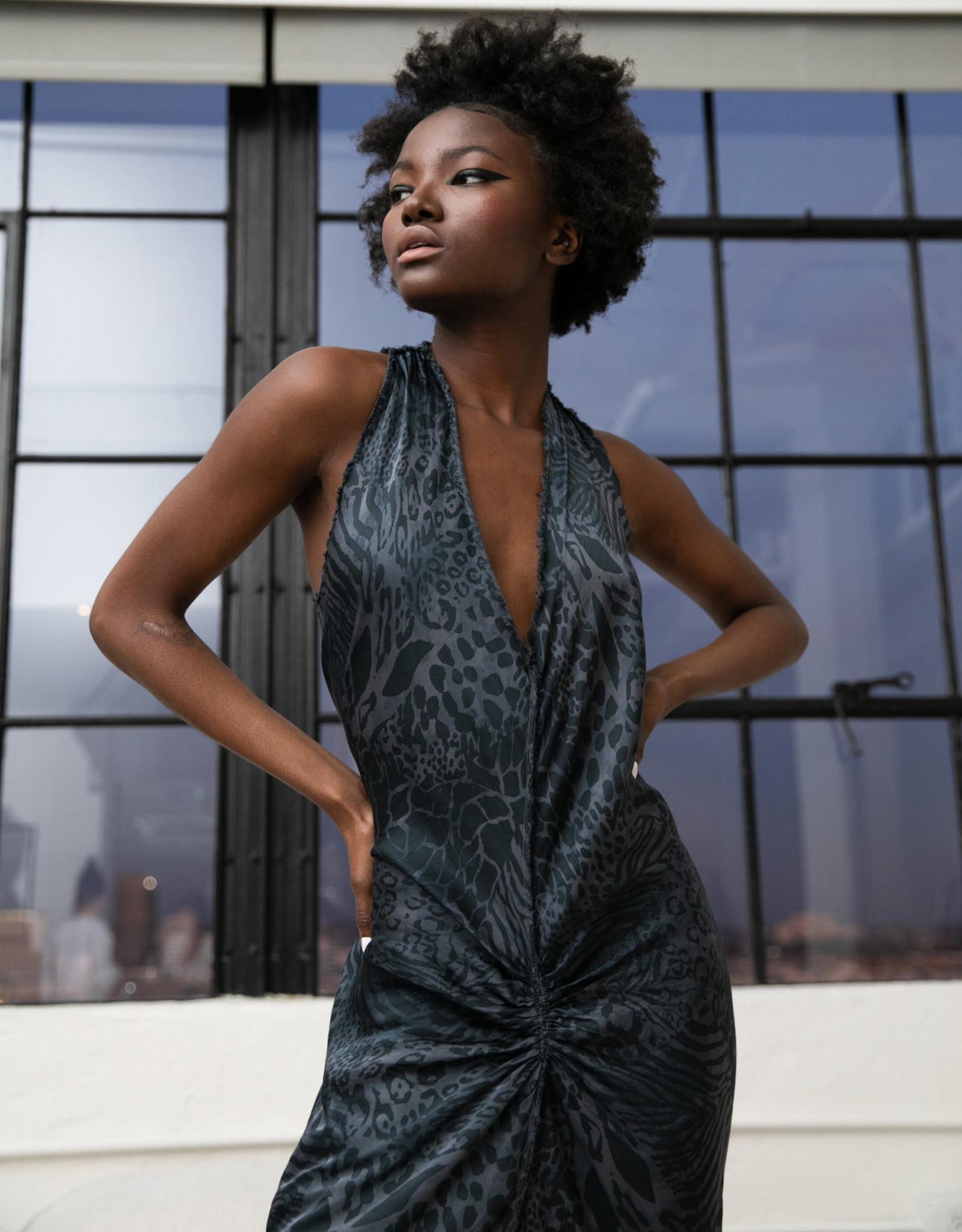 JAGA - Leopard Dress