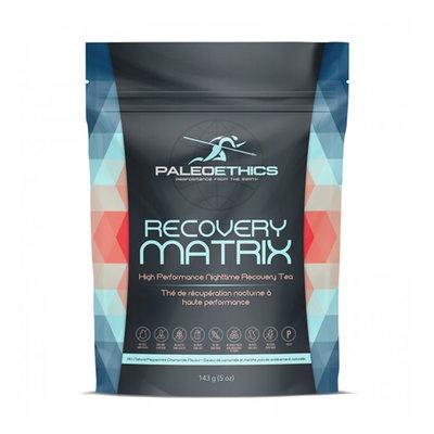 Paleoethics Paleoethics Recovery Matrix