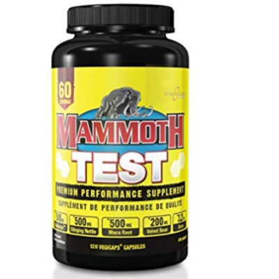 Mammoth Interactive Nutrition Mammoth Test