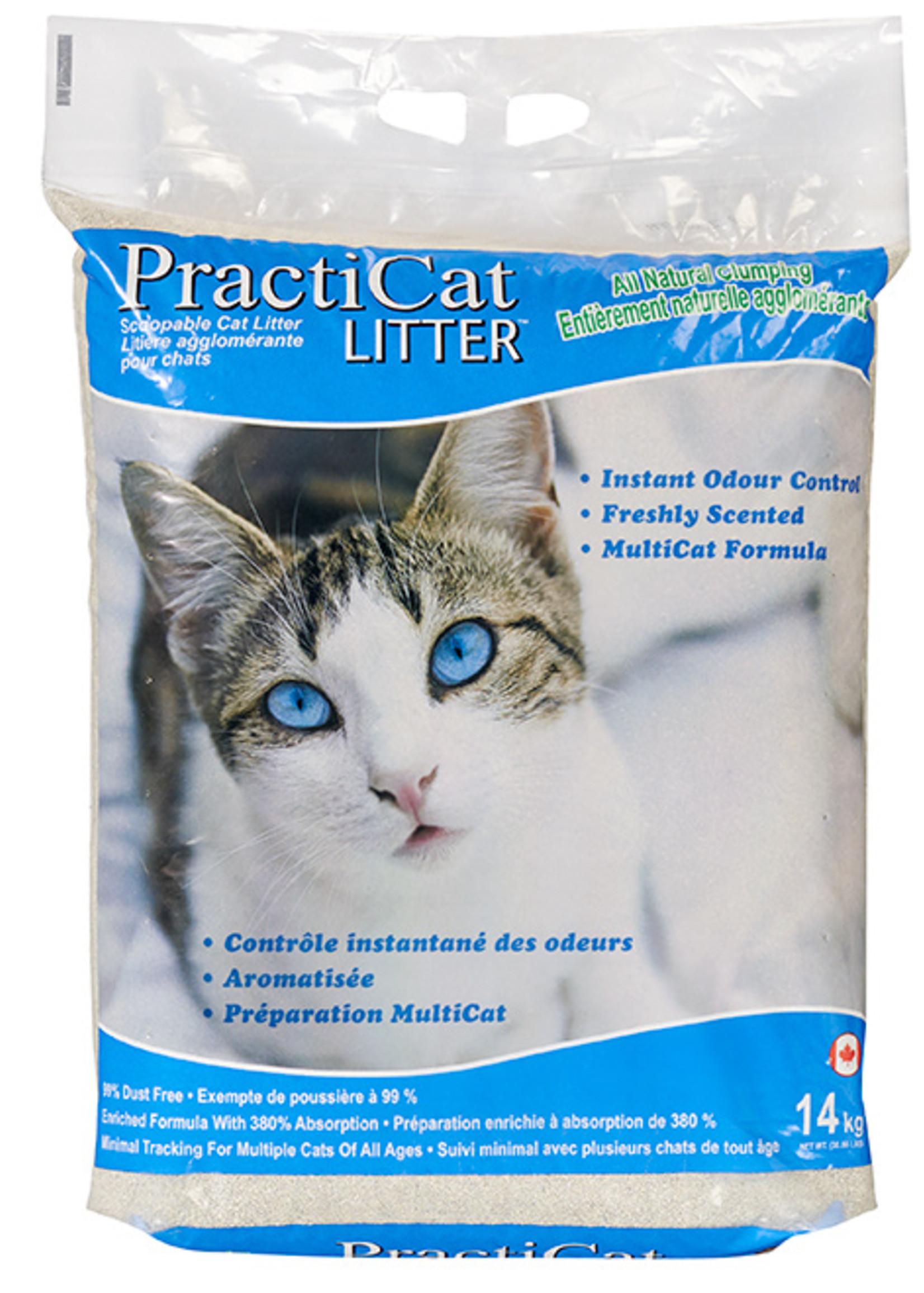 PRACTICAT PRACTICAT LITTER 31lbs