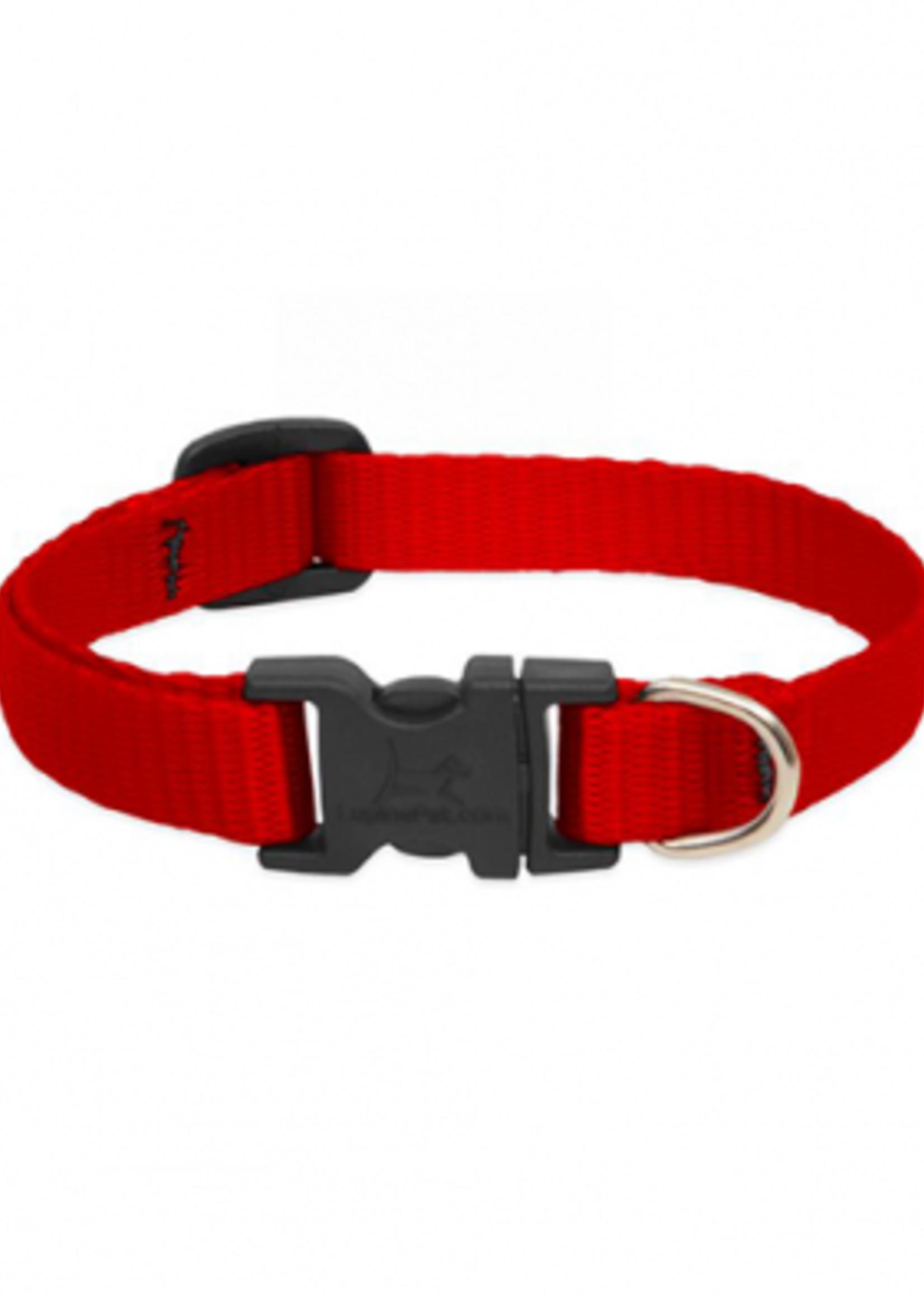 "Lupine® Basics Collar 1/2"" x 8-12"""
