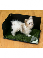 """Pooch Pad™ Classic Potty with Hike Shield 16x24"""""""
