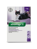 Bayer ADVANTAGE II LARGE CAT Over 9lbs (4x)