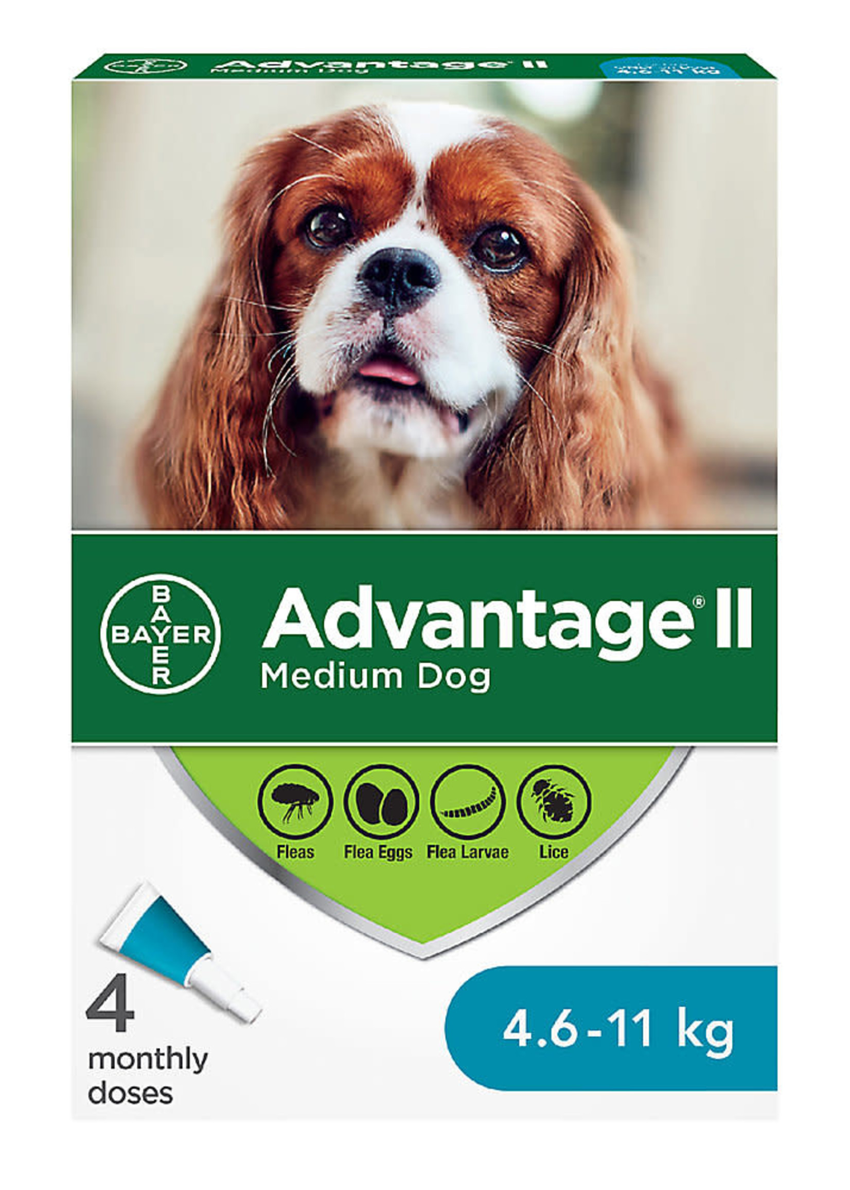 Bayer Advantage® II - Medium Dog