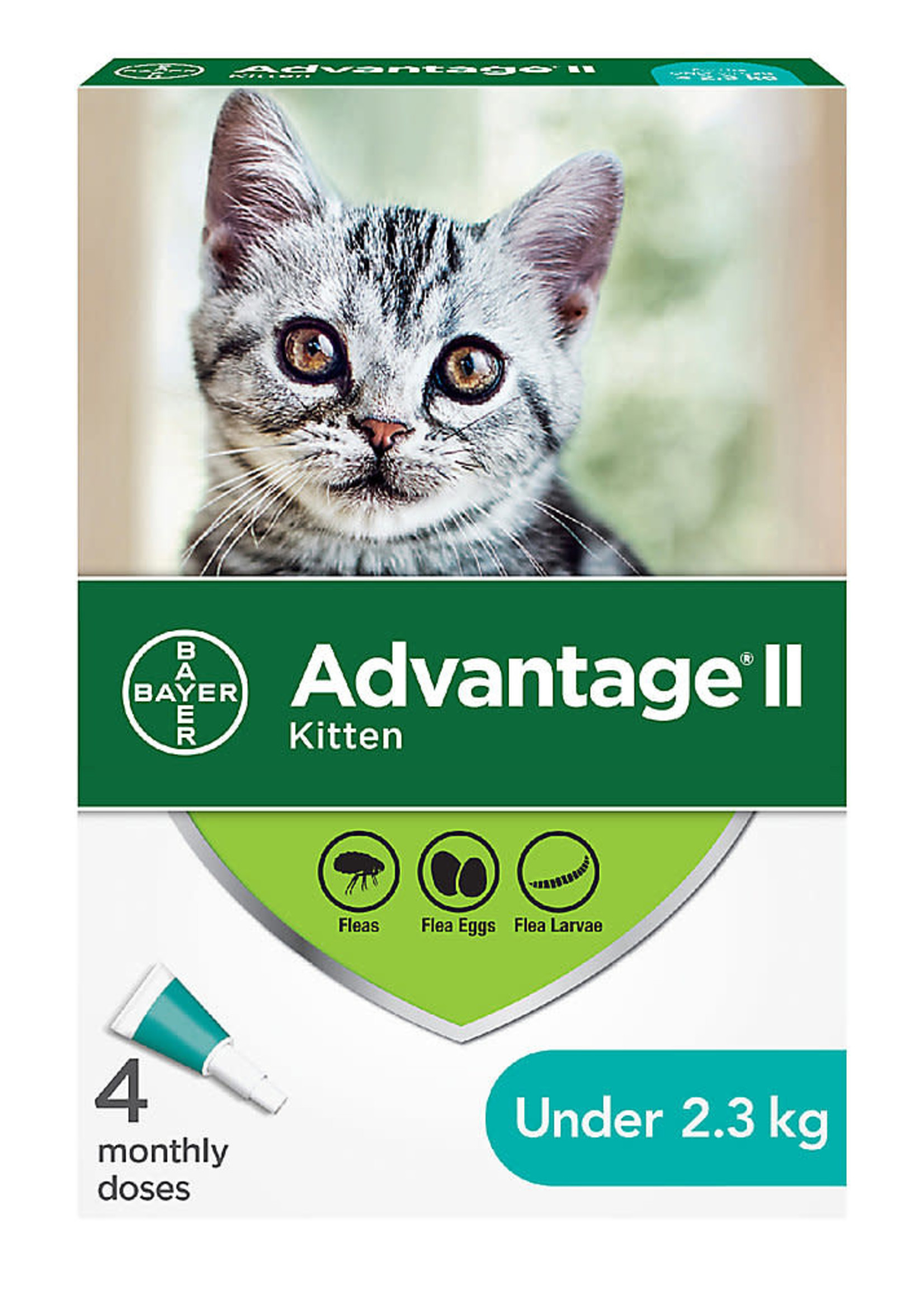 Bayer Bayer Advantage® II - Kitten