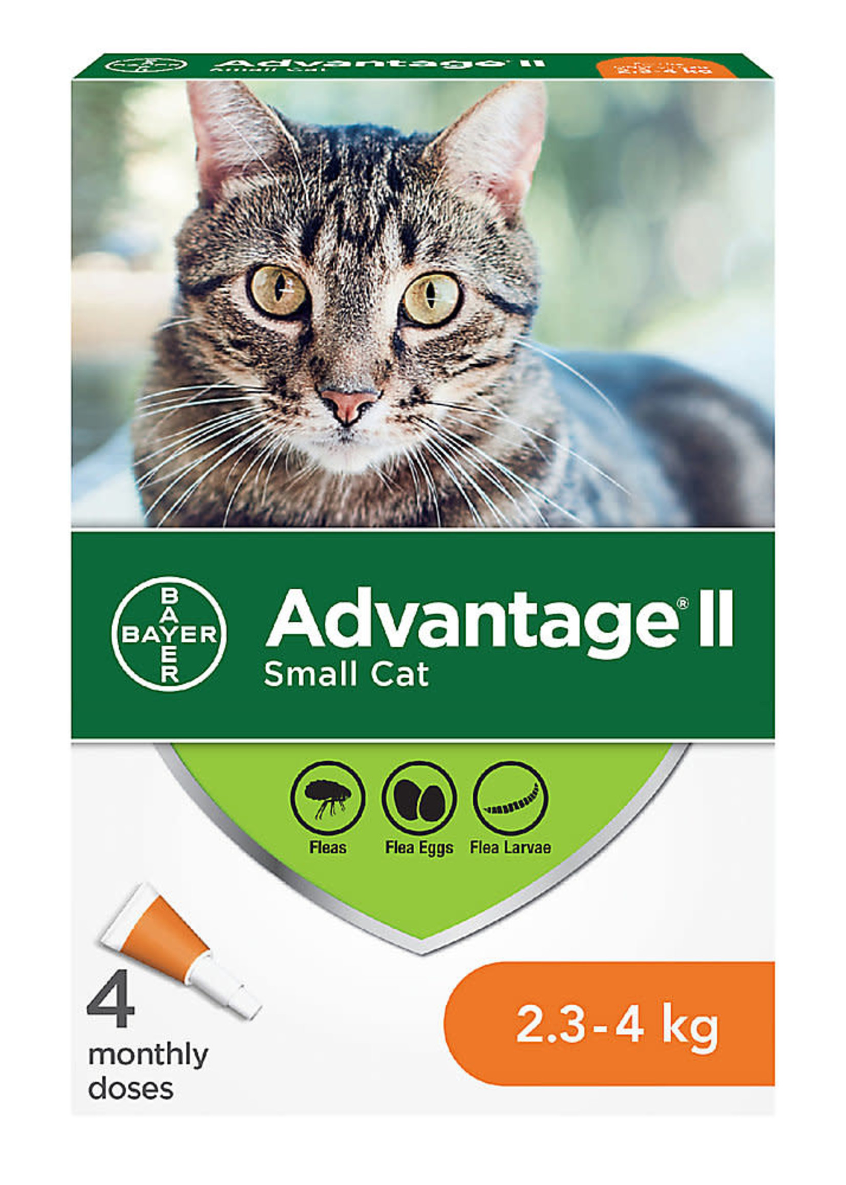 Bayer Advantage® II - Small Cat