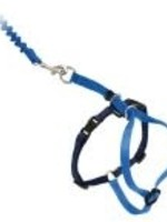 Come With Me Kitty™ Harness & Bungee Leash Medium