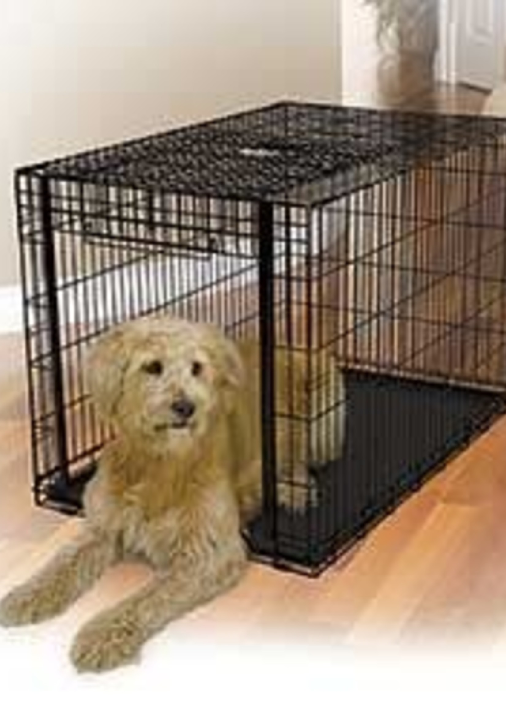 MidWest Homes for Pets™ MidWest Ovation™ Single Door Crate Medium