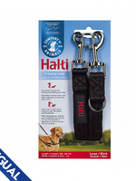 Company of Animals® Training Lead Large