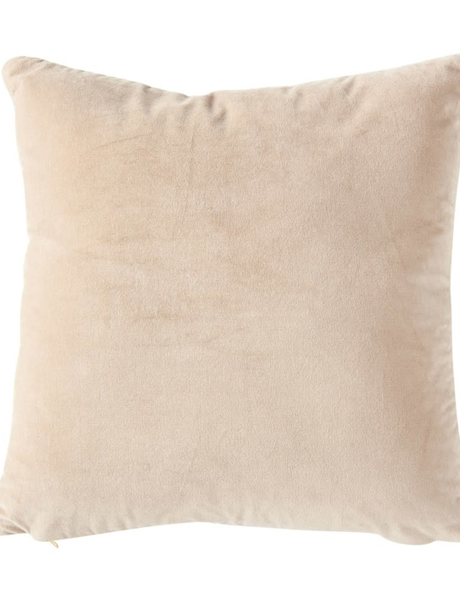 Taupe Velvet Pillows