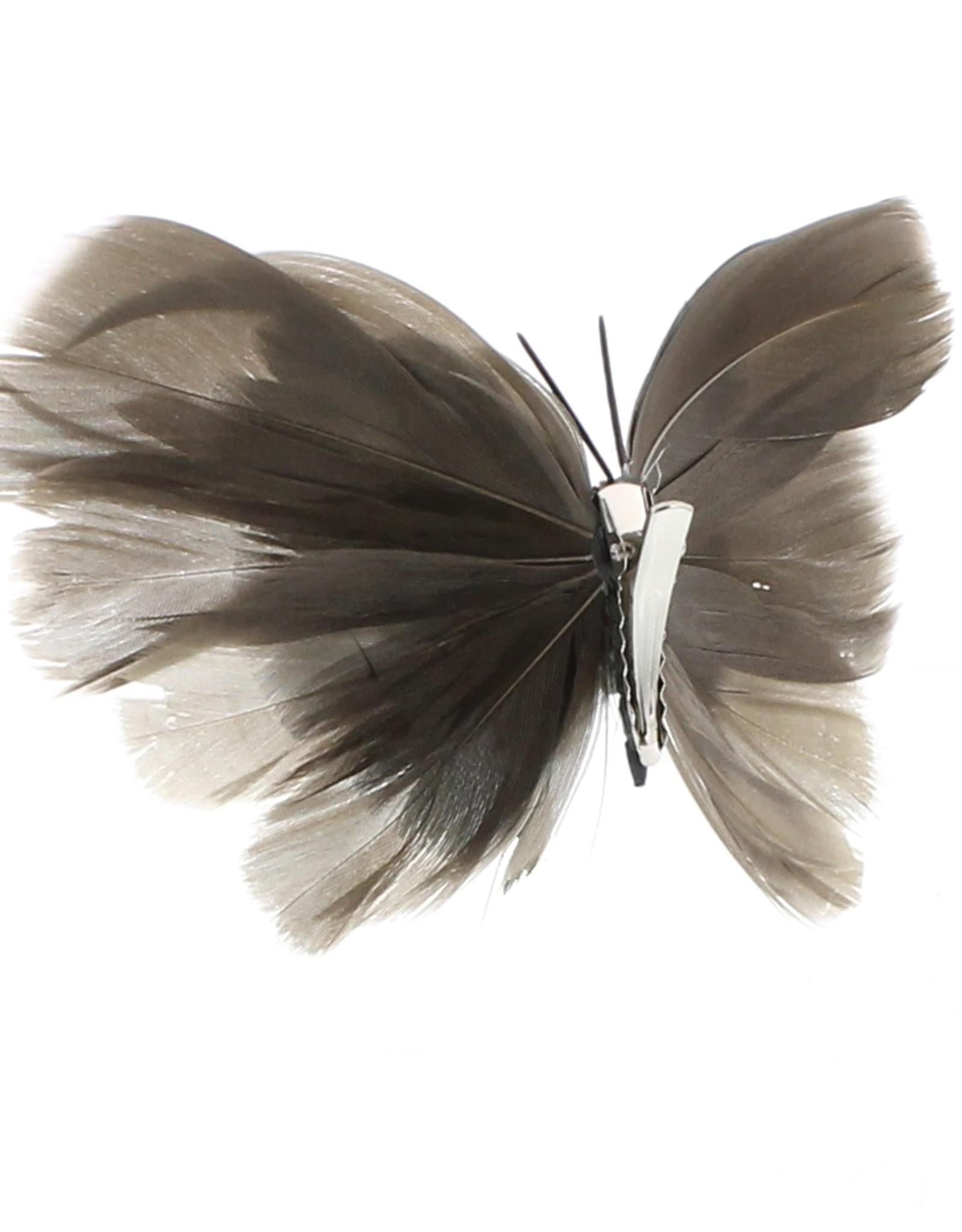 BUTTERFLY CLIP-ON NATURAL ASSORTED