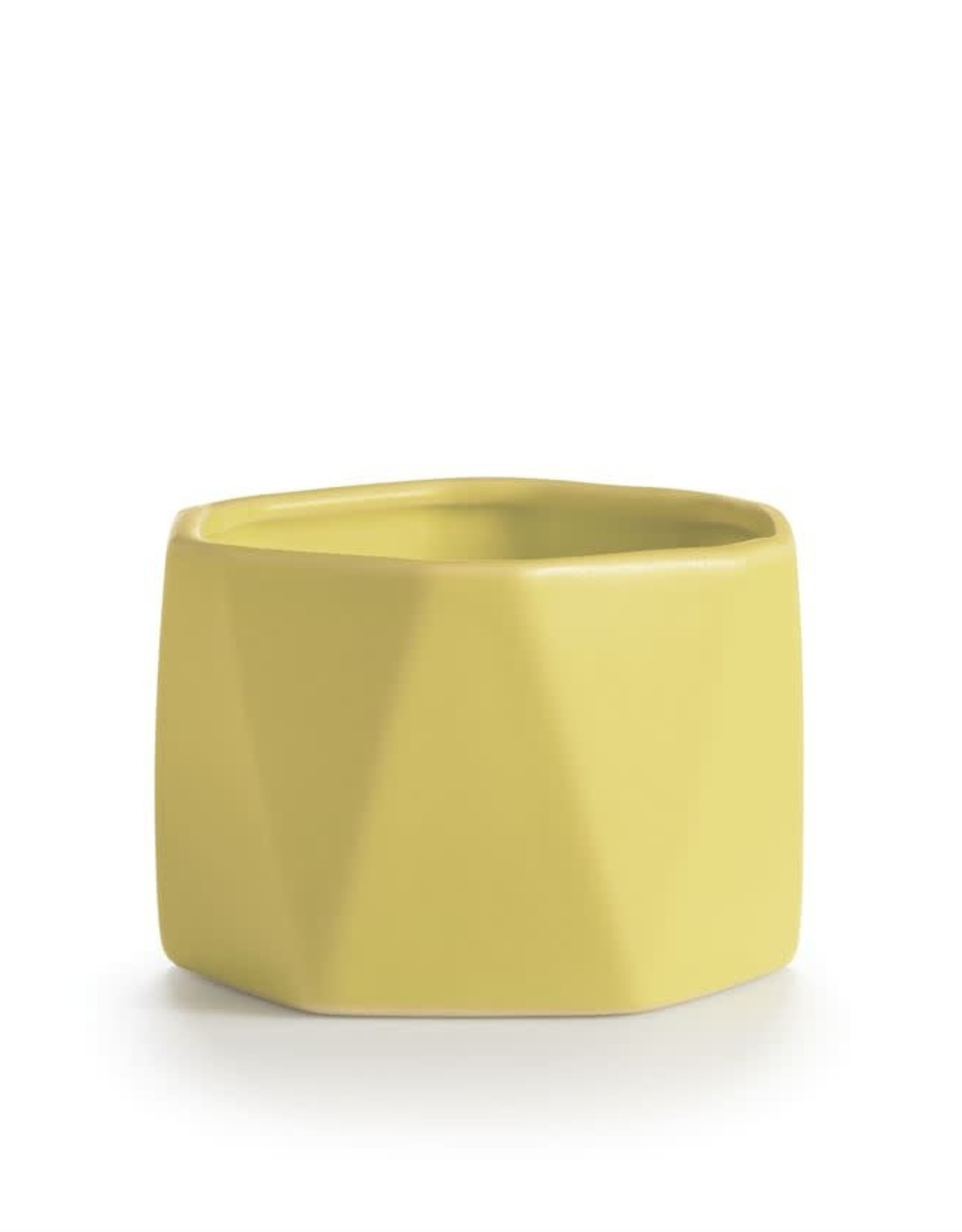 Pineapple Cilantro Candle