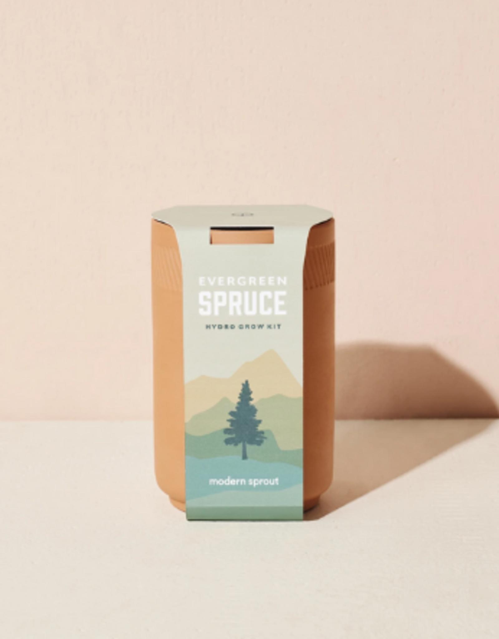 Spruce Growing Kit