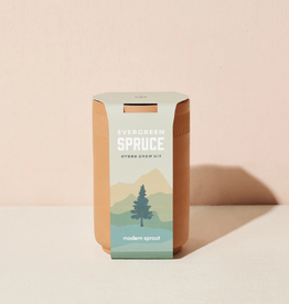 Spruce Growing Kit