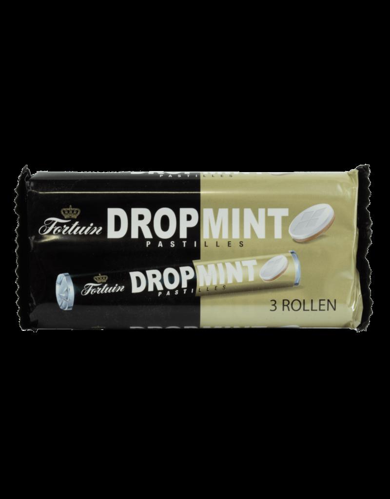 Fortuin Fortuin Dropmint Pastilles 3 Pack 3X48g
