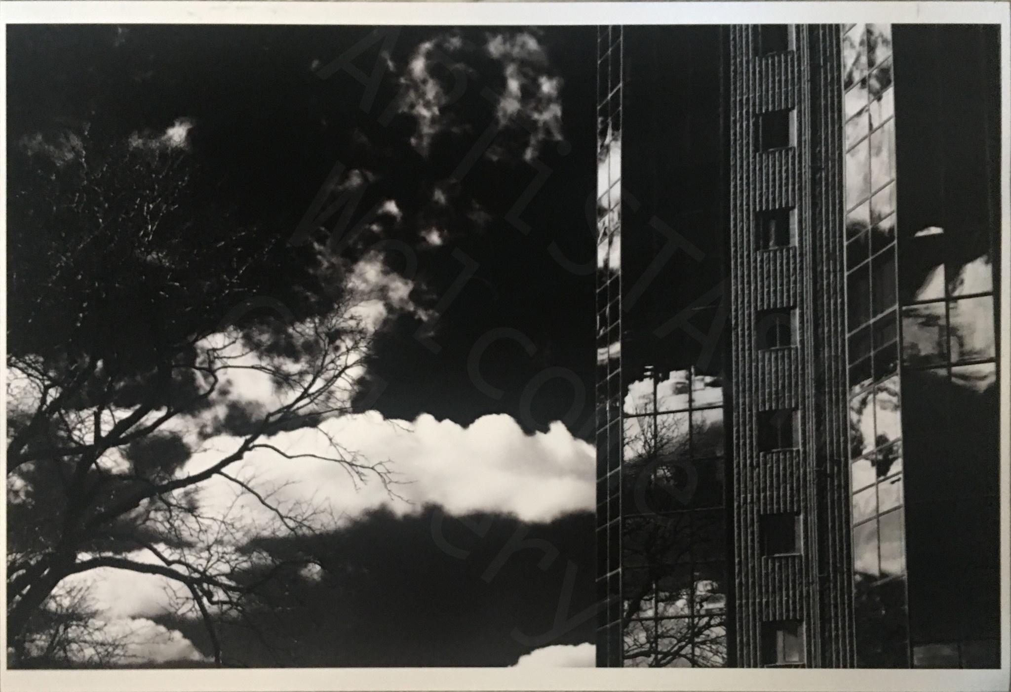 Michael Ray Yost Reflecting on Nature